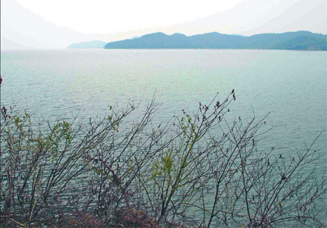 Dam proposal for Poyang Lake causes controversy