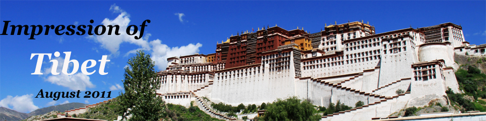 Impressions of Tibet (August 2011)
