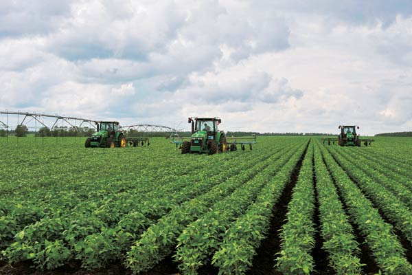 Heilongjiang s farms turn to green [1] Chinadaily