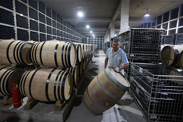 Wine region in Ningxia developing global fame