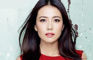 gao yuanyuan net worth