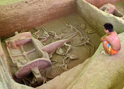 A child squats beside a hole containing vehicles and horse bones from the Eastern Zhou dynasty (770 BC-221 BC), which was dug out and made open to the public, in Luoyang, central China's Henan province, August 17, 2006. [Reuters]