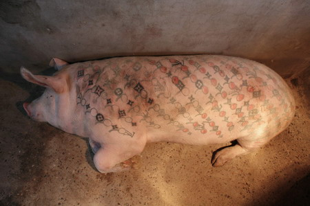 "A tattooed pig rests in the ""Art Farm"" of Belgian conceptual artist Wim"