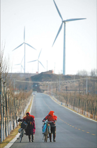 China's wind energy industry sees challenges