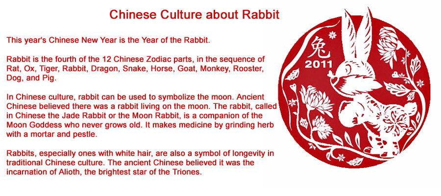 Special All About The Year Of The Rabbit