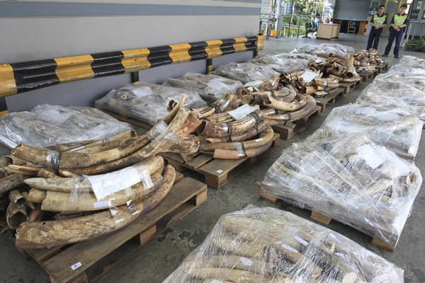 Measures curb illegal ivory trade in China