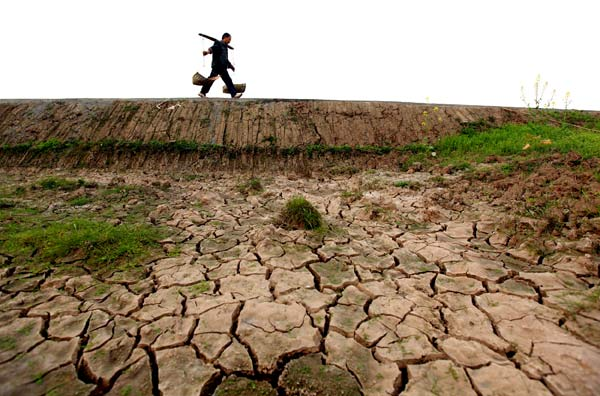 Drought continues to wreak havoc in SW China
