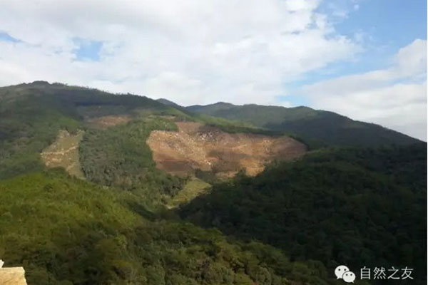 Court hearing China's landmark NGO environmental lawsuit