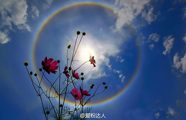 Rainbow solar halo observed in Beijing[4]- Chin