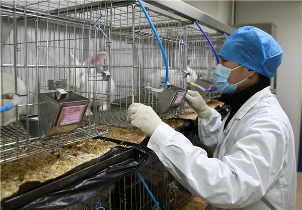 national lab animals standard on the way1 chinadailycomcn