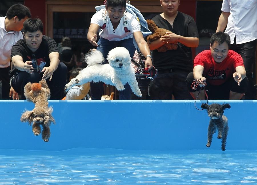 现金网:来自中国各地的十照片:月21-27