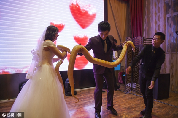 Newlyweds Give Each Other Pythons As Wedding Gifts