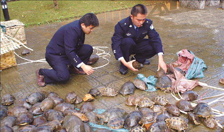 Wildlife smuggling becoming rarer but has not gone extinct