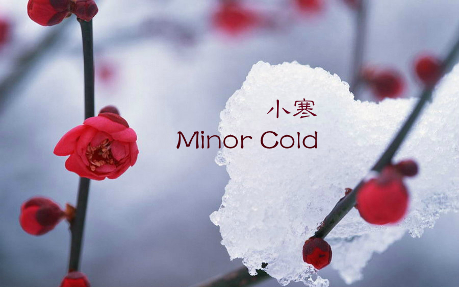 24 Solar Terms: 6 things you may not know about Minor Cold[1]