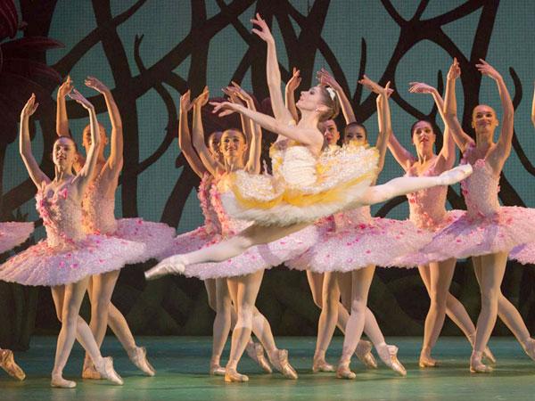 Royal Ballet coming to Shanghai