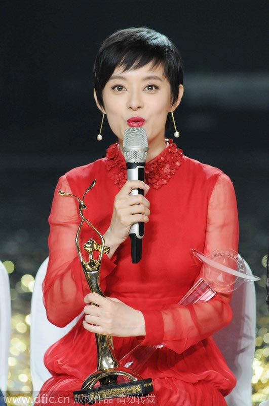 Golden Eagle Award for Best Television Series Director (China)