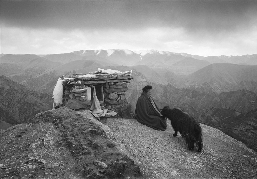Photographer Captures Life On Tibet Plateau 1 Chinadaily