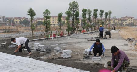 新圩镇滨溪作文年底将建成公园小学生花图片