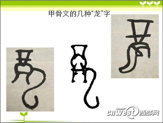 """甲骨文中""""龙""""字的写法有好多种-长安寻龙 从符号到文字 一笔一画写"""