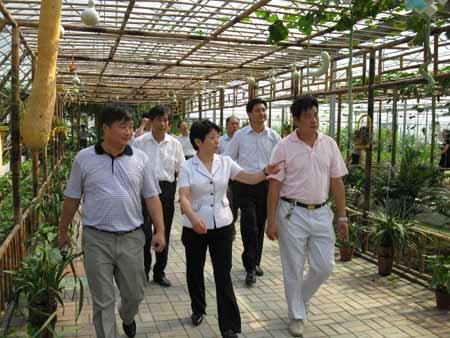 江苏副省长黄莉新考察黄桥老区现代高效农业