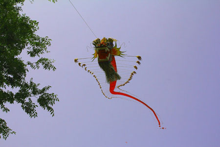 南通举办外国友人风筝放飞文化体验活动