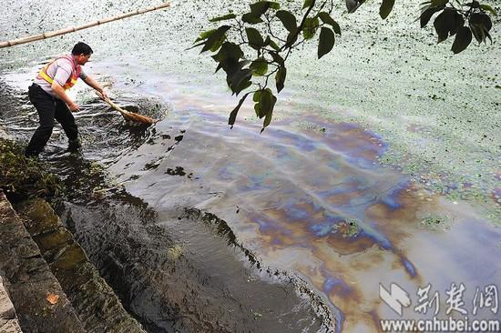 油桶导致大面积污染