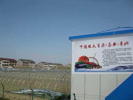 中国航天育种基地落户江苏泰兴