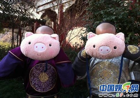 两个猪头脸