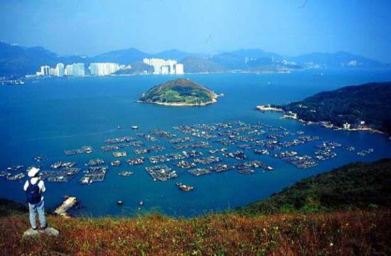 南丫岛是香港境内的第三大岛屿,面积仅次于大屿山和香港岛。 由于靠近市区,南丫岛便成了周末悠闲的胜地。从烦嚣的香港岛市区出发,只需半小时船程,便可到达小岛。岛上中西文化交融,洋溢着浓厚的艺术气息。清新的空气,优美的海岸风光,美味的海鲜美食,吸引了不少游人到此郊游远足,为这小岛增添了迷人的缤纷色彩。