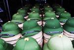 绿帽论坛有哪些