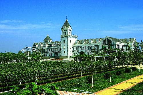 中国进入葡萄酒酒庄战国时代[1]