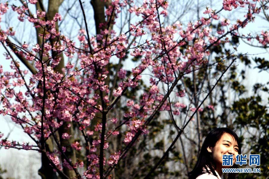 /enpproperty-->   3月26日,2012上海樱花节樱之缘摄影赛在上海宝山顾村公园开拍。参赛作品着力凸显2012上海樱花节樱满枝头花争艳主题,通过镜头反映樱花之美、樱花节的文明游园、自然与人文相融的情景。    她在花丛中。新华社记者张明摄