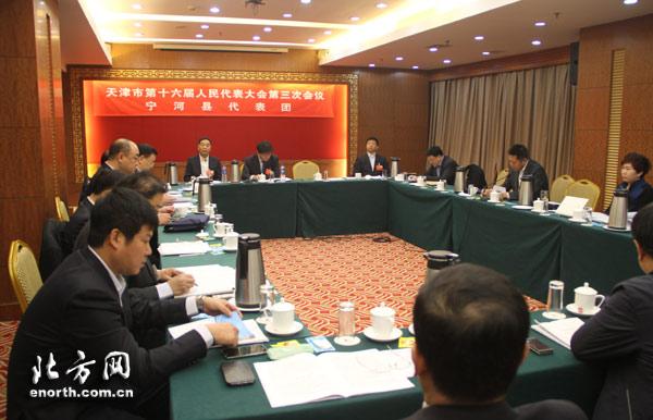 张炳江:调整产业结构 打造天津未来科技城
