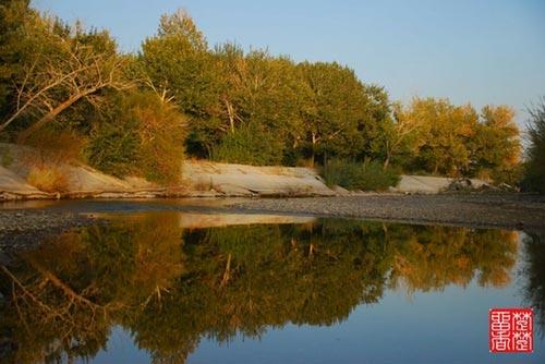秋季风景 新疆哈纳斯
