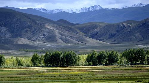 西藏获准设立尼木国家级森林公园 总面积6192公顷