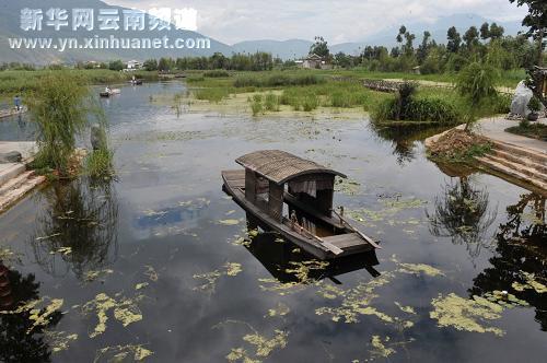 洱源县西湖村湿地公园(8月4日摄).