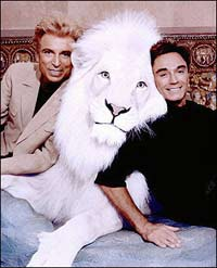Siegfried and Roy White Tiger 1