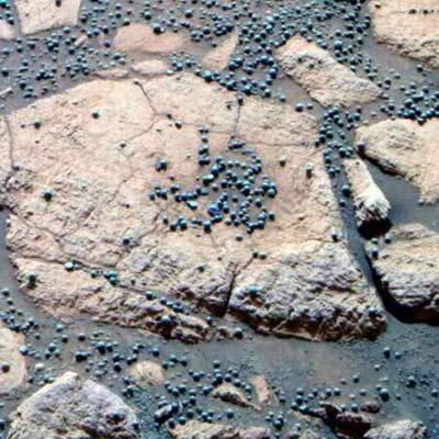 Blueberries On Mars
