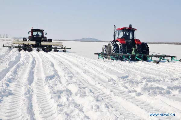Heilongjiang's farmers begin spring ploughing in snow