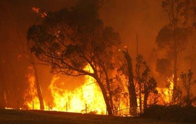 澳大利亚南部热浪_中国日报网环球在线消息:持续高温和干燥热风使澳大利亚东南部面临
