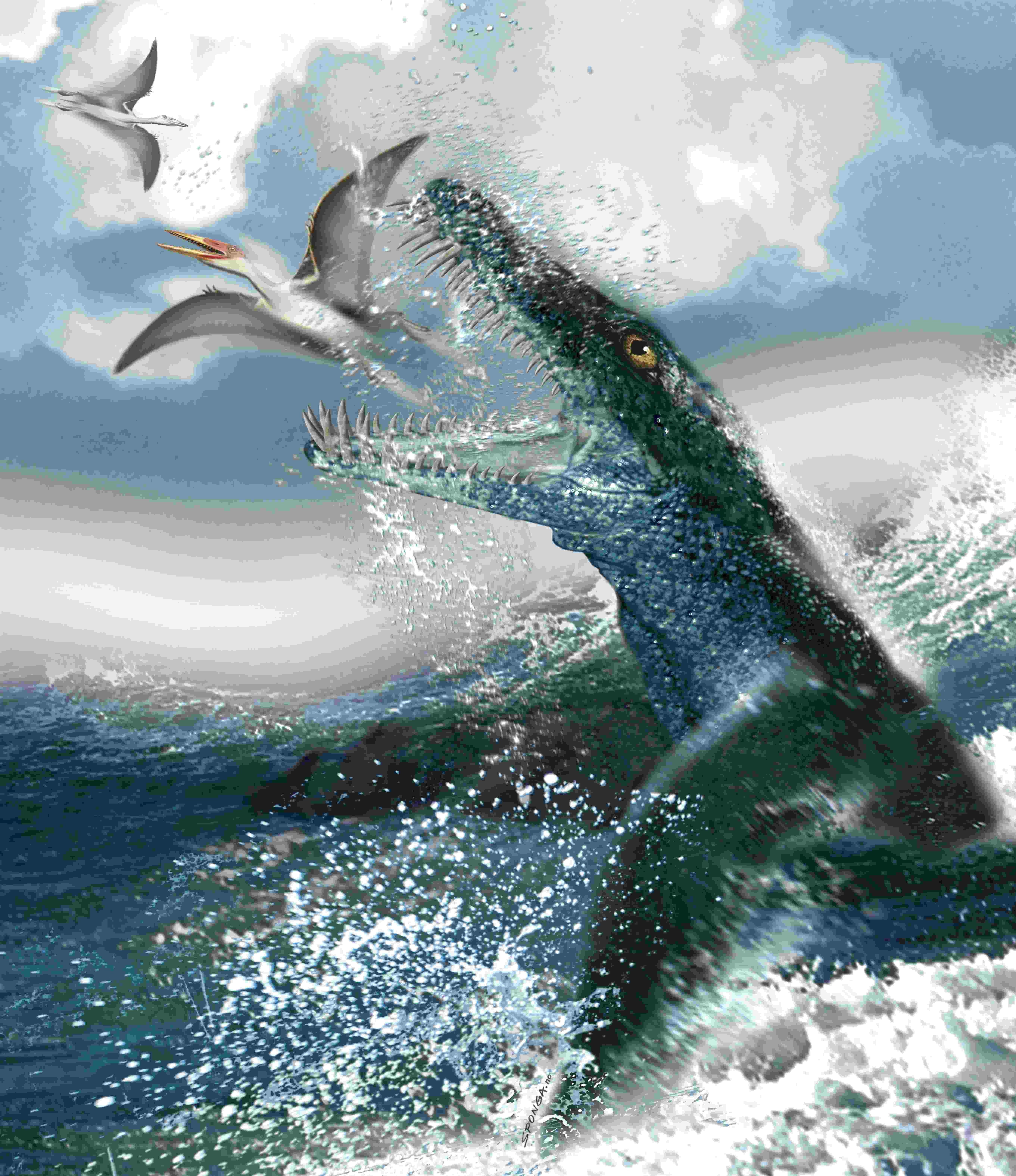 """史前海洋动物牙齿巨大,撕咬力惊人,堪称""""海洋暴龙""""."""