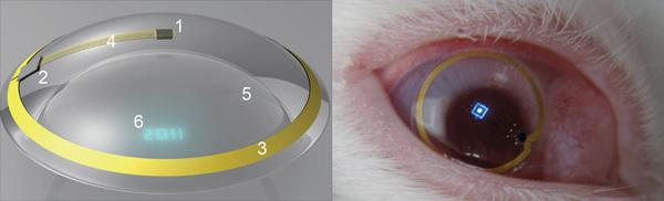 这证明天线,无线电芯片,控制电路和微米级的光源可以被集成在隐形眼镜