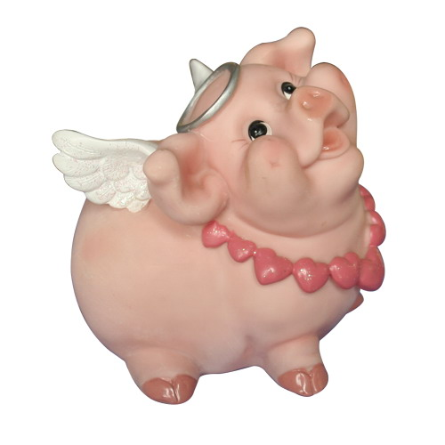 谁是最可爱的猪