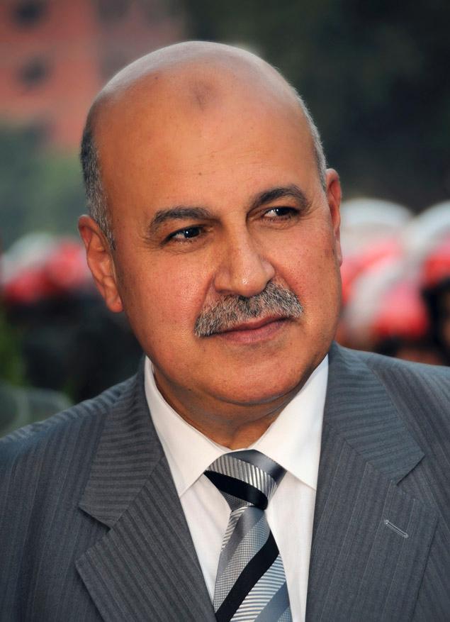 埃及宪法草案有望获通过 副总统辞职疑遭排挤
