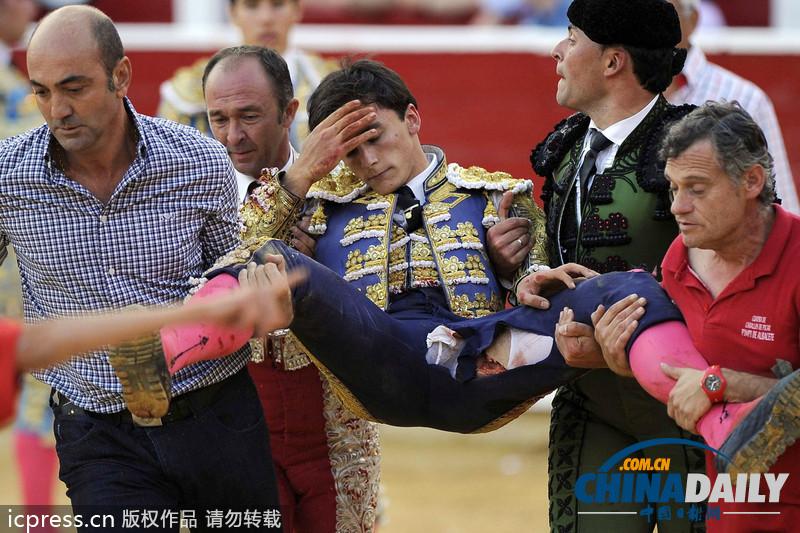 西班牙斗牛士被公牛刺中大腿 裤裆撕烂狼狈抬