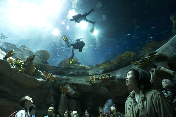 Visitors Look At Divers Swimming In A Giant Aquarium At