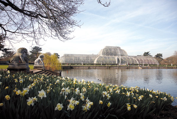 The Waterlily House At Kew Gardens An Architectural
