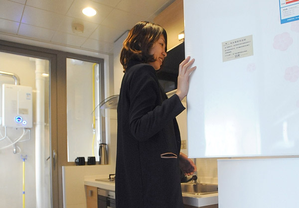 A Tenant Checks The Kitchen In A Rental Apartment In