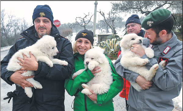 Rescuers Hold Three Puppies That Were Found Alive In The