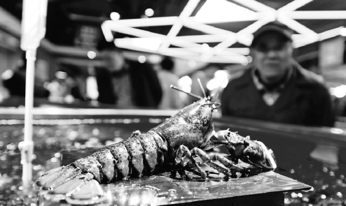 A Customer Checks Out Boston Lobsters At A Shopping Mall
